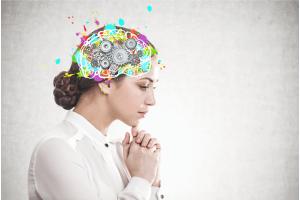 Cérebro Humano e as suas funções