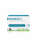 Magnésio B