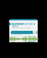 Raspberry Capture+