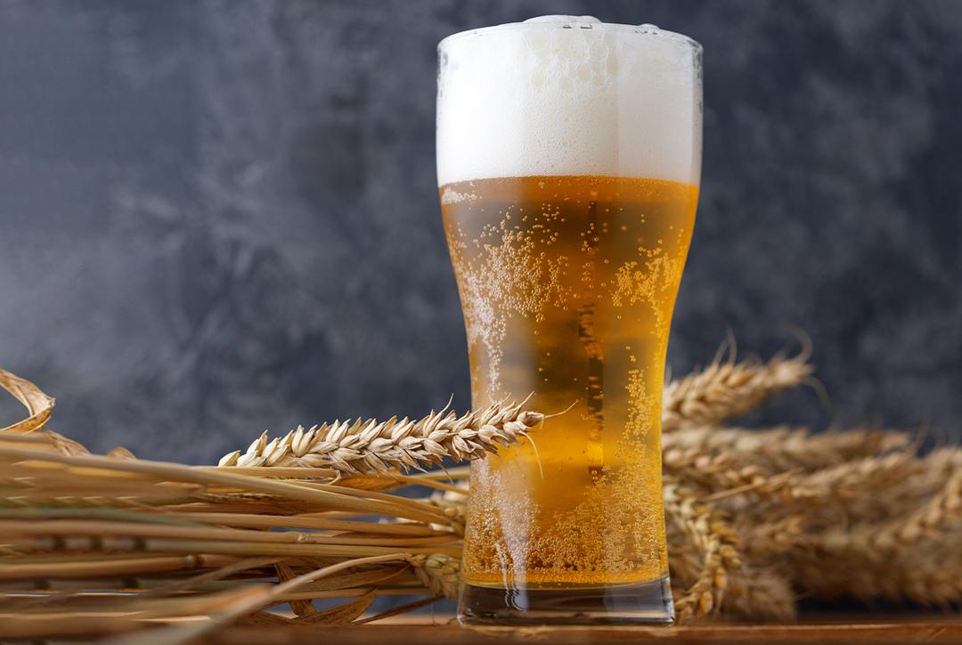 Cerveja: Prós e Contras!