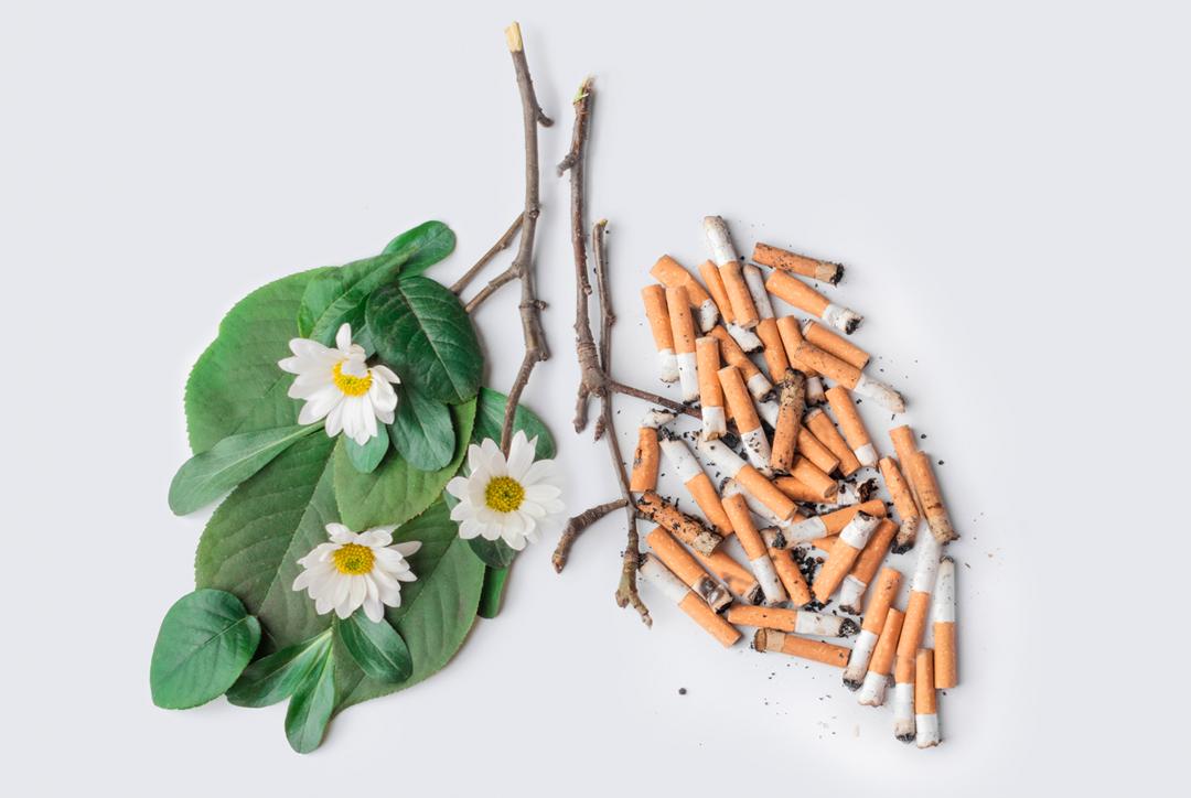 Minimizar os malefícios do tabaco, é possível?