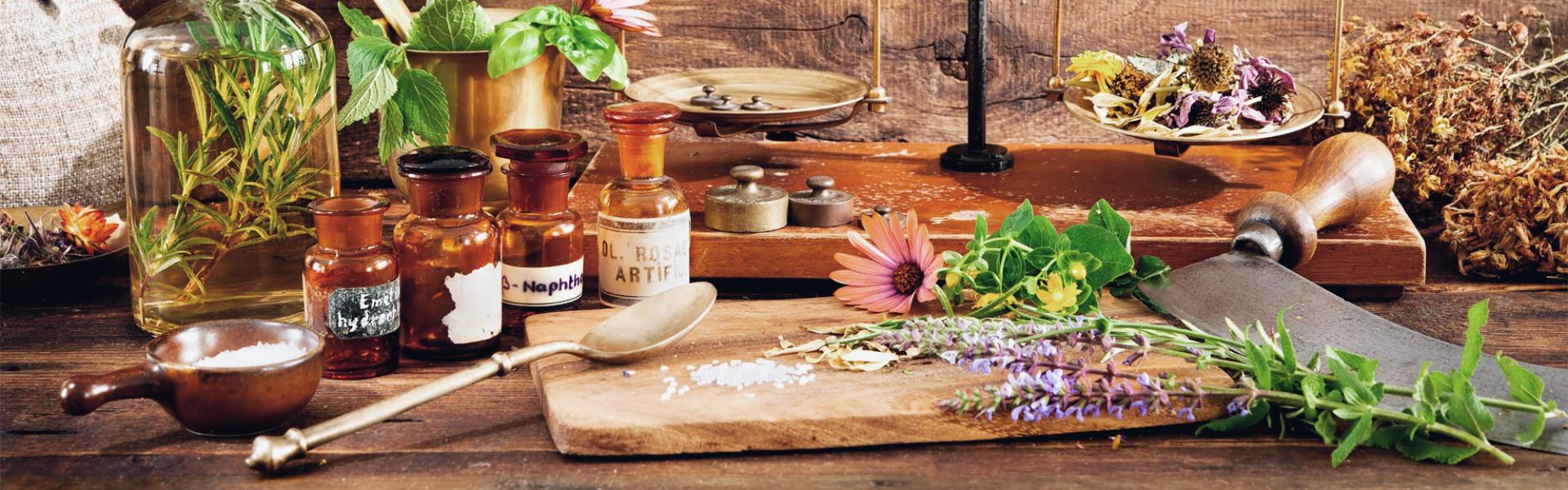 Fitoterapia: a evolução e a importância do uso de plantas para fins terapêuticos